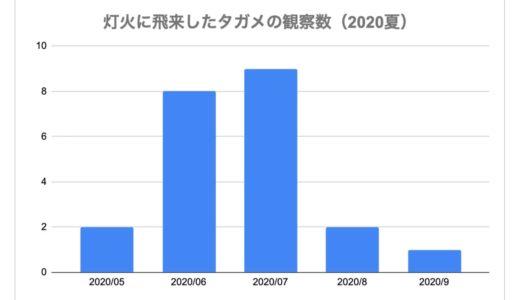 タガメ灯火観察例2020_サムネ