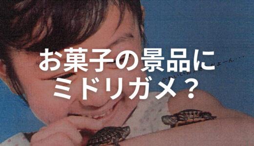 【昭和レトロ広告】お菓子の景品が「アマゾンのミドリガメあげます!」だった時代