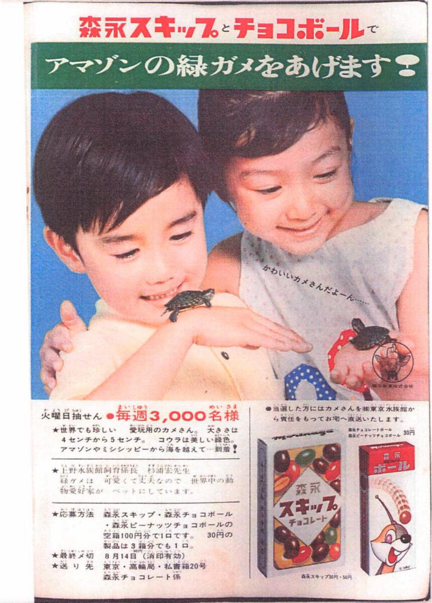 ミドリガメお菓子景品広告