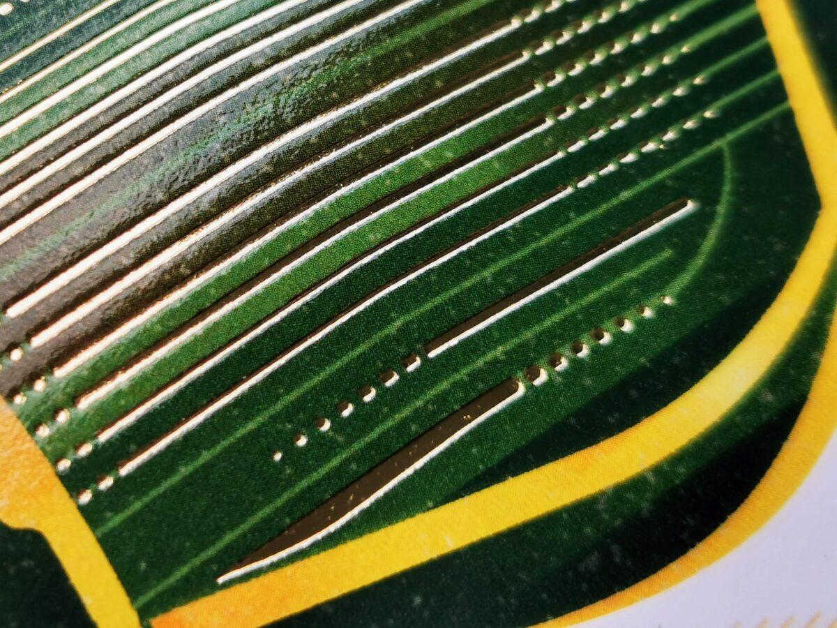 オウサマゲンゴロウモドキ透明箔+金箔押し