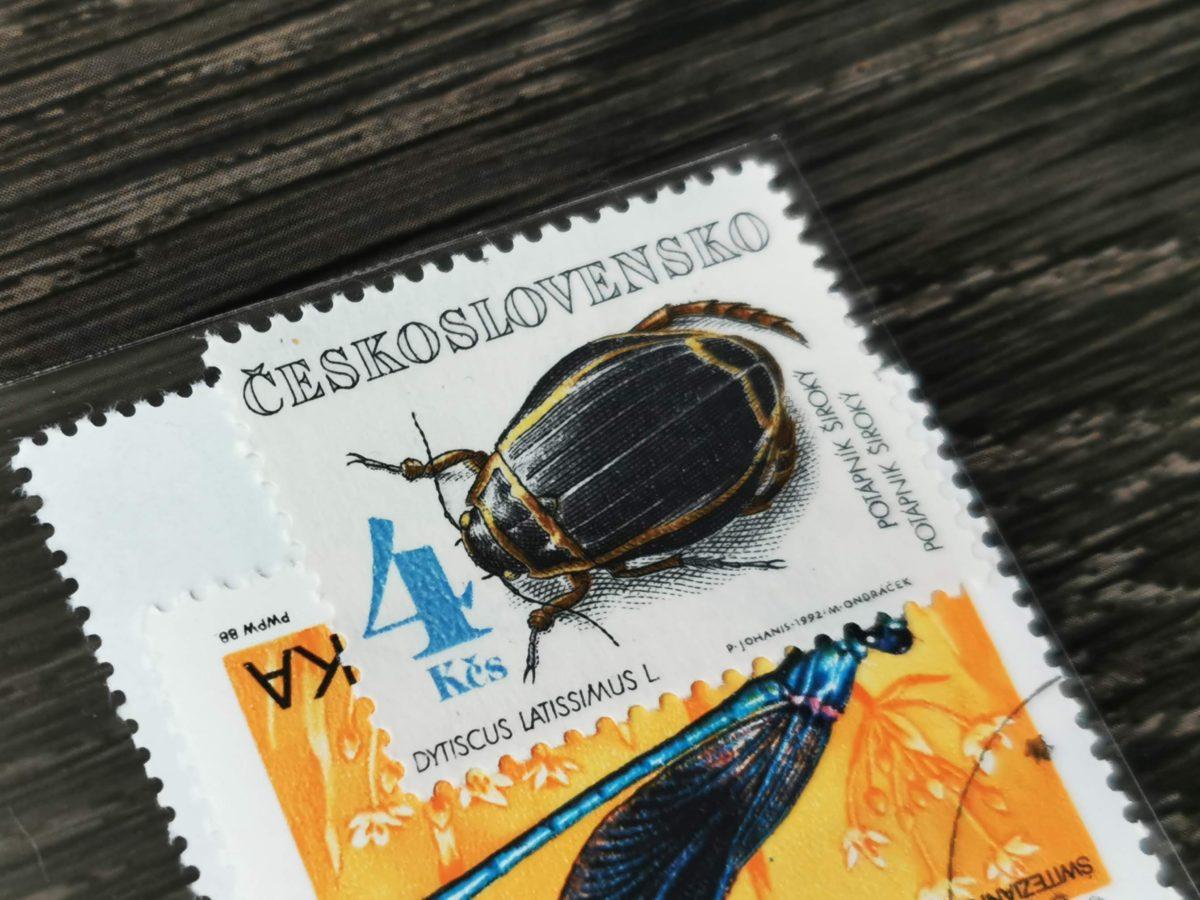 オウサマゲンゴロウモドキの切手